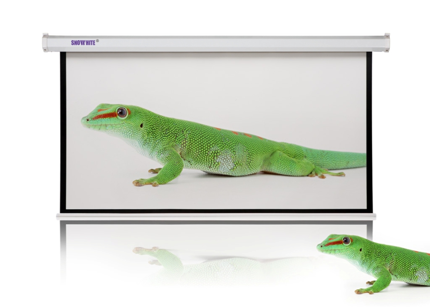 SNOWHITE Luxurious Electric Projection Screen