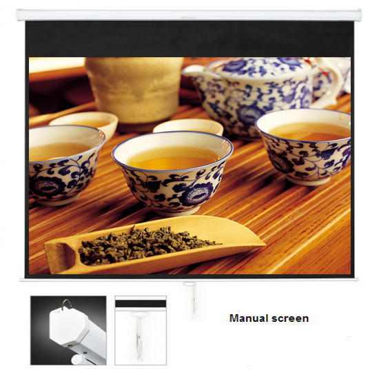 SNOWHITE Manual Professional Plus pull down projection screen