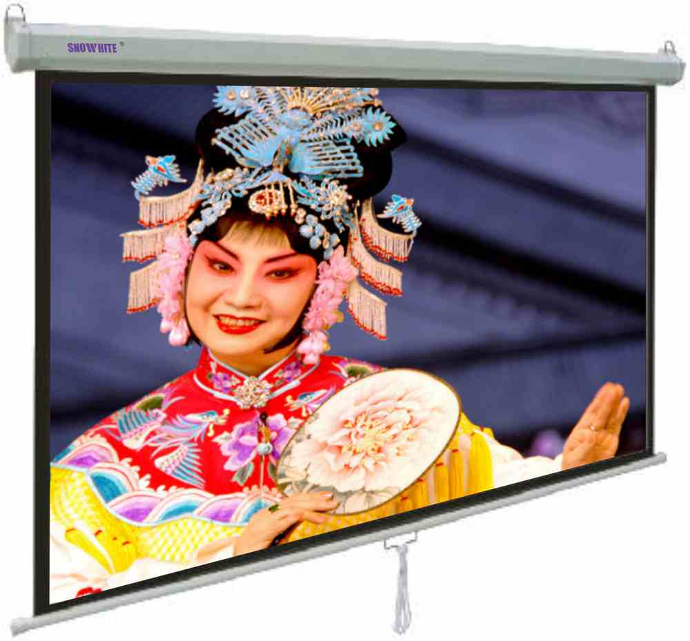 "SNOWHITE 60"" Manual Professional Plus pull down projection screen 